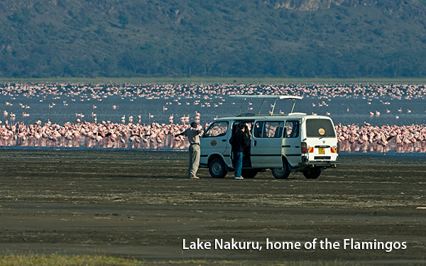 lake-nakuru-home-of-the-flamingos