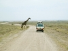 africa-safari-vehicle-2