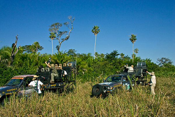 pantanal-photographic-vehicles