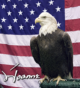 Joanne-Signature-Eagle