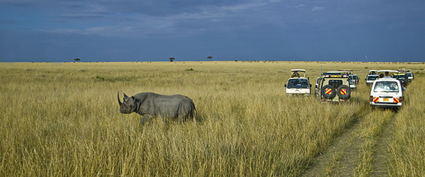 Photo-Safari-in-Kenya